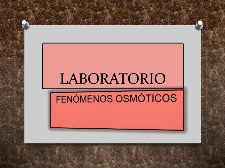 LABORATORIO<br />FENÓMENOS OSMÓTICOS<br />