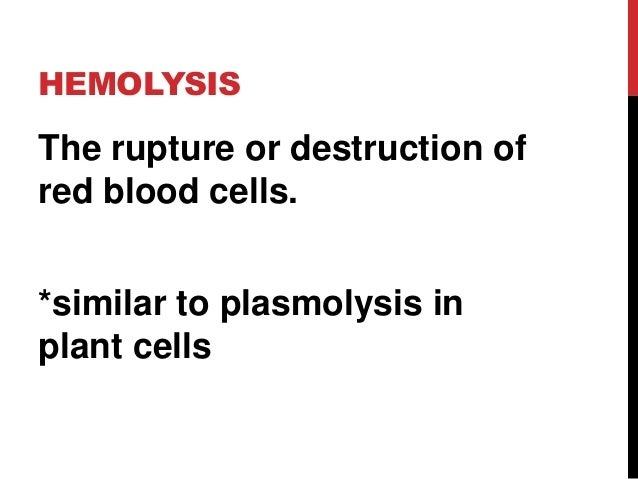 haemolysis of red blood cells by different solutions