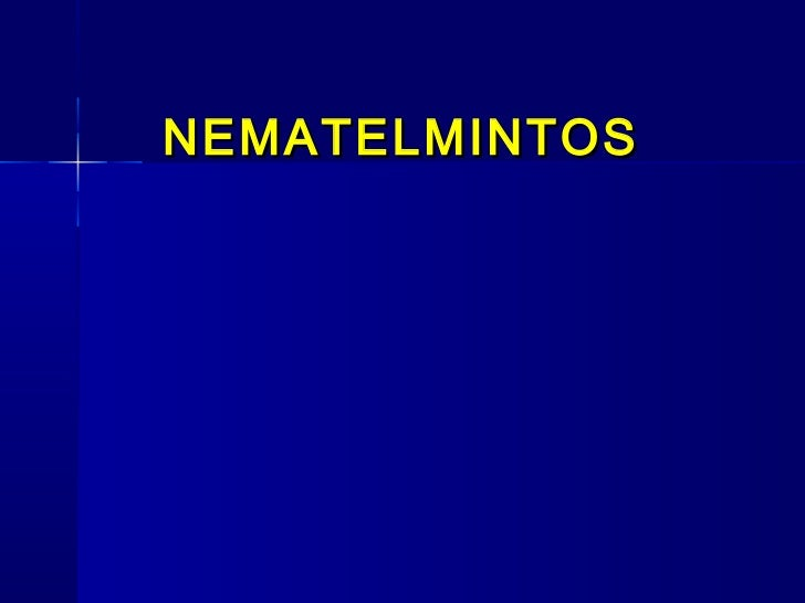 NEMATELMINTOS