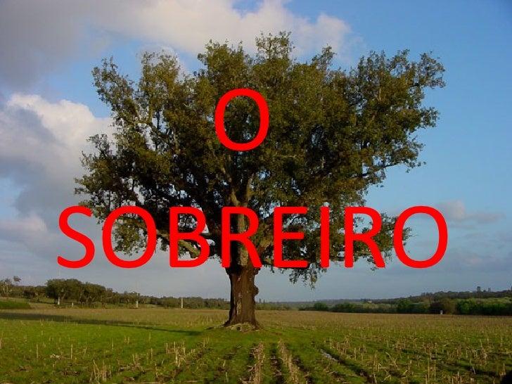 O  SOBREIRO
