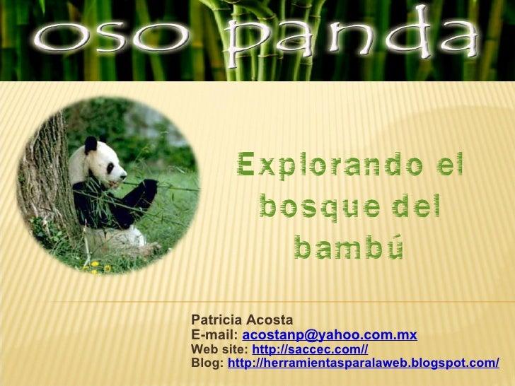 Patricia Acosta E-mail:  [email_address] Web site:  http://saccec.com// Blog:  http://herramientasparalaweb.blogspot.com/ ...