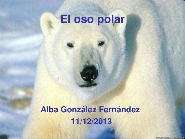 El oso polar  Alba González Fernández 11/12/2013