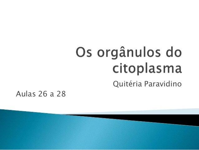 Quitéria Paravidino Aulas 26 a 28