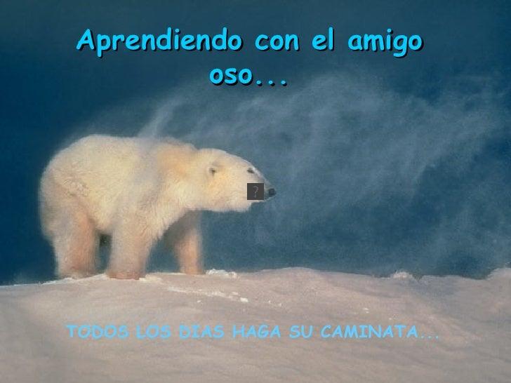 TODOS LOS DIAS HAGA SU CAMINATA...   Aprendiendo con el amigo oso...