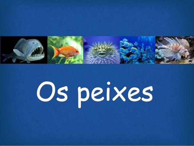 Introdução  • Os peixes foram os primeiros vertebrados a surgirem em nosso planeta.  • Surgimento: 45 milhões de anos  • M...