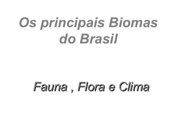 Os principais Biomas      do Brasil  Fauna , Flora e Clima