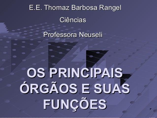 OS PRINCIPAISOS PRINCIPAIS ÓRGÃOS E SUASÓRGÃOS E SUAS FUNÇÕESFUNÇÕES E.E. Thomaz Barbosa RangelE.E. Thomaz Barbosa Rangel ...