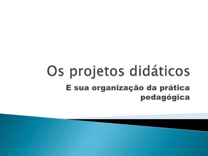 Os projetos didáticos <br />E sua organização da prática pedagógica<br />