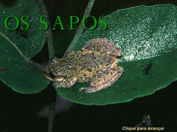 OS SAPOS Clique para avançar