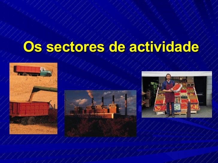 Os sectores de actividade