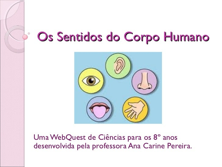 Os Sentidos do Corpo HumanoUma WebQuest de Ciências para os 8º anosdesenvolvida pela professora Ana Carine Pereira.