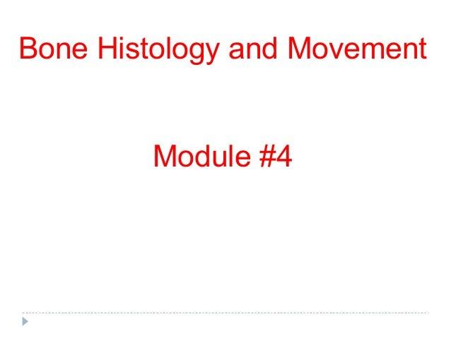 Bone Histology and Movement        Module #4