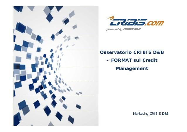 O t i CRIBIS D&BOsservatorio CRIBIS D&B – FORMAT sul Credit Management Marketing CRIBIS D&B