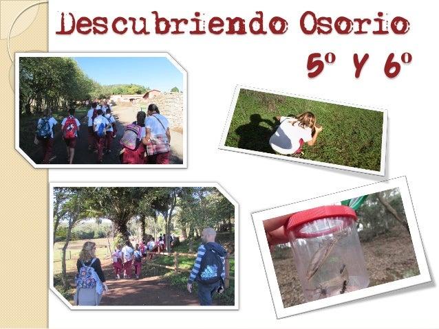 Descubriendo Osorio 5º y 6º