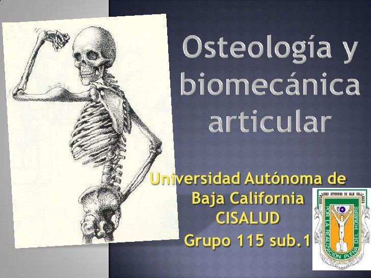 Osteología y biomecánica articular<br />Universidad Autónoma de Baja CaliforniaCISALUD<br />Grupo 115 sub.1<br />