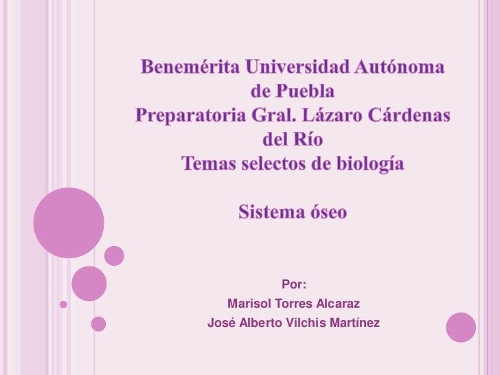 Por:   Marisol Torres AlcarazJosé Alberto Vilchis Martínez