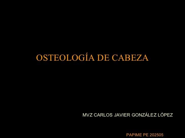 OSTEOLOGÍA DE CABEZA MVZ CARLOS JAVIER GONZÁLEZ LÓPEZ PAPIME PE 202505