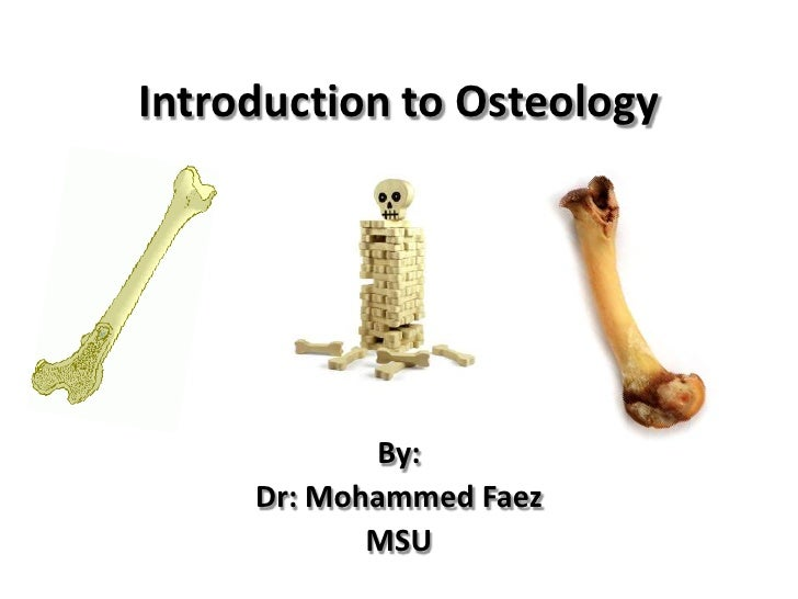 Introduction to Osteology<br />By:<br />Dr: Mohammed Faez<br />MSU<br />