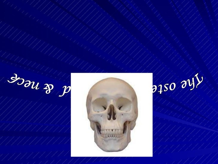 The osteology of head  & neck