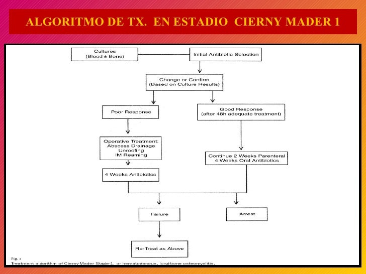 ALGORITMO DE TX.  EN ESTADIO  CIERNY MADER 1