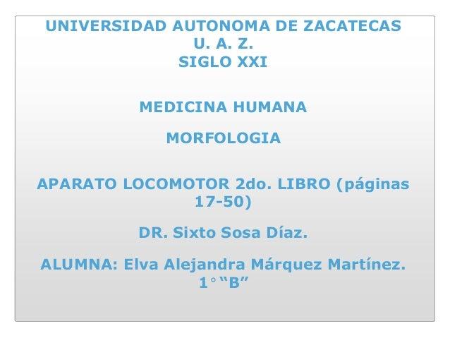 UNIVERSIDAD AUTONOMA DE ZACATECAS              U. A. Z.             SIGLO XXI          MEDICINA HUMANA             MORFOLO...