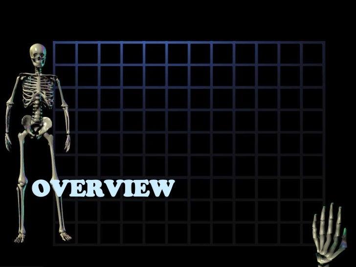 Osteoporosis Slide 2