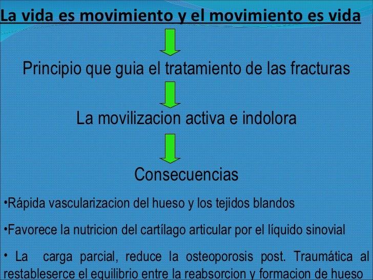 La vida es movimiento y el movimiento es vida <ul><li>Principio que guia el tratamiento de las fracturas </li></ul><ul><li...