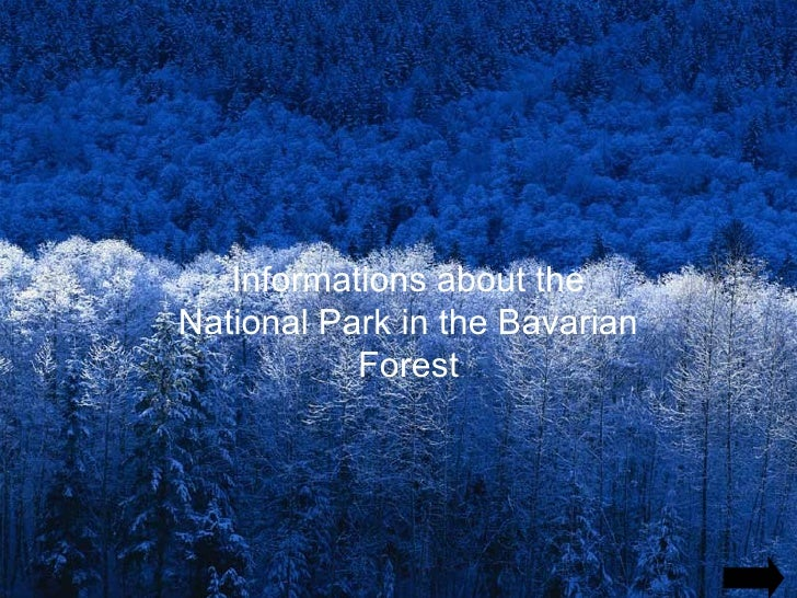 Informations about the National Park in the Bavarian Forest