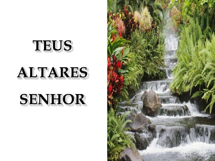 TEUS <br />ALTARES <br />SENHOR<br />