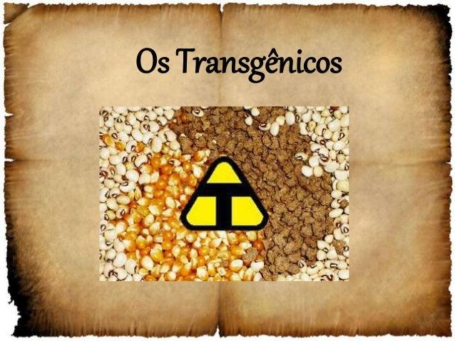 Os Transgênicos