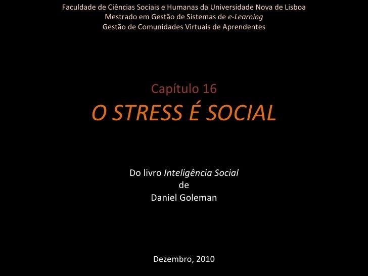 Faculdade de Ciências Sociais e Humanas da Universidade Nova de Lisboa Mestrado em Gestão de Sistemas de  e-Learning Gestã...