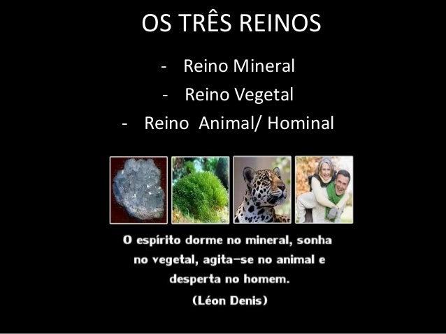 OS TRÊS REINOS    - Reino Mineral    - Reino Vegetal- Reino Animal/ Hominal