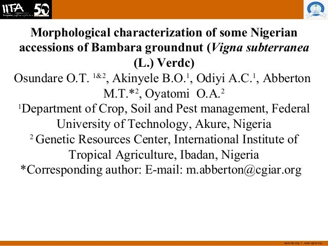 www.iita.org I www.cgiar.org Morphological characterization of some Nigerian accessions of Bambara groundnut (Vigna subter...
