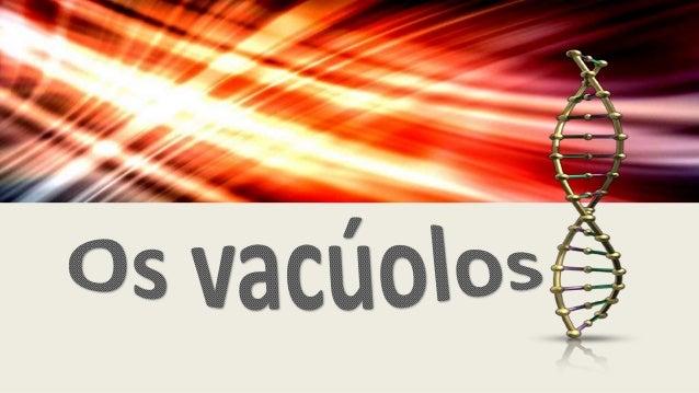 O que são ? • Os vacúolos são estruturas citoplasmáticas de diferentes tamanhos, revestidos por membrana e formados a part...