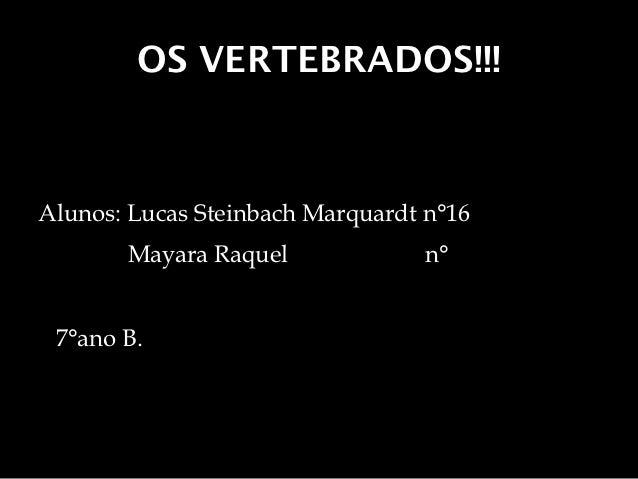 OS VERTEBRADOS!!!Alunos: Lucas Steinbach Marquardt n°16       Mayara Raquel              n° 7°ano B.