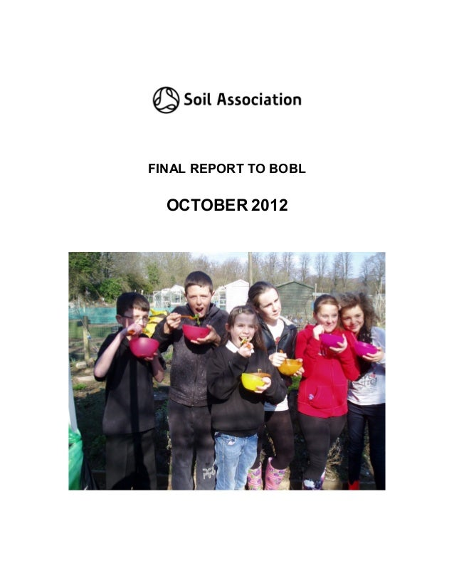 FINAL REPORT TO BOBL  OCTOBER 2012