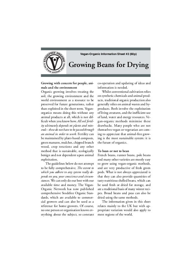 Vegan-Organic Information Sheet #2 (60p)  Growing Beans for Drying Growing with concern for people, animals and the enviro...