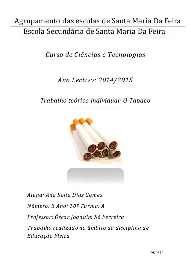 Página| 1 Agrupamento das escolas de Santa Maria Da Feira Escola Secundaria de Santa Maria Da Feira Curso de Ciências e Te...