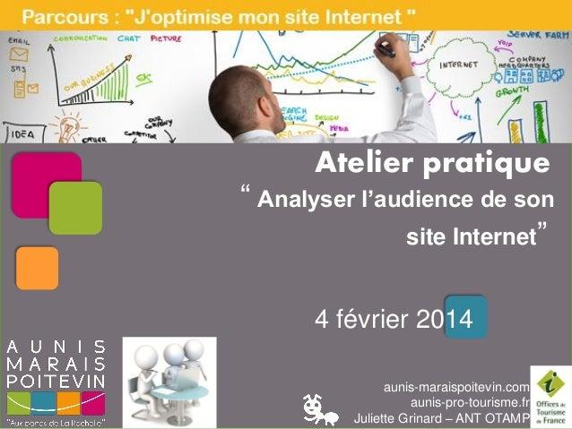 """LES PAUSES NUMERIQUES  Atelier pratique  """" Analyser l'audience de son site Internet"""" 4 février 2014 aunis-maraispoitevin.c..."""