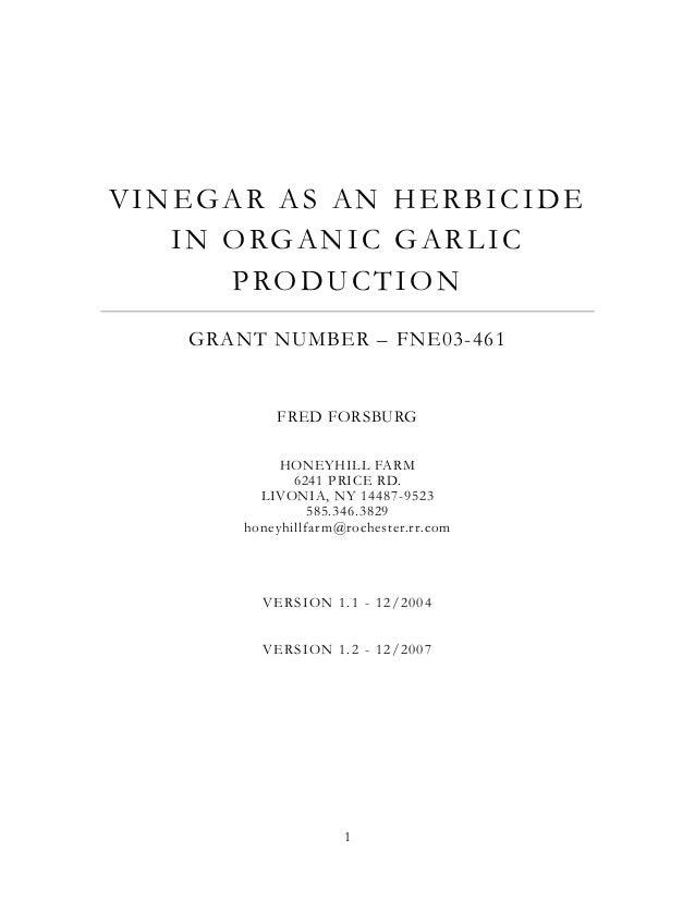 VINEGAR AS AN HERBICIDE I N O RG A N I C G A R L I C PRODUCTION GRANT NUMBER – FNE03-461  FRED FORSBURG HONEYHILL FARM 624...