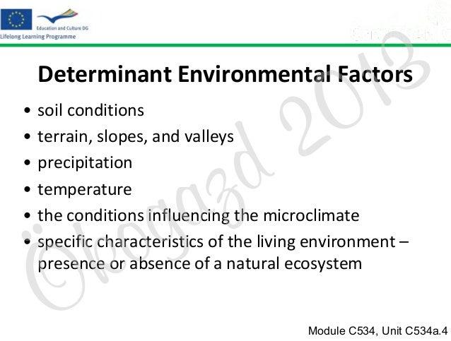 3 1 0  Determinant Environmental Factors • • • • • •  2 d  soil conditions terrain, slopes, and valleys precipitation temp...