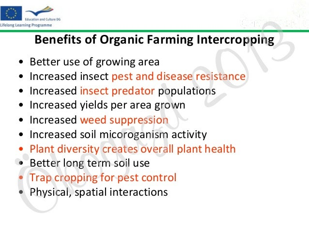 3 1 0  Benefits of Organic Farming Intercropping • • • • • • • • • •  2 d  Better use of growing area Increased insect pes...