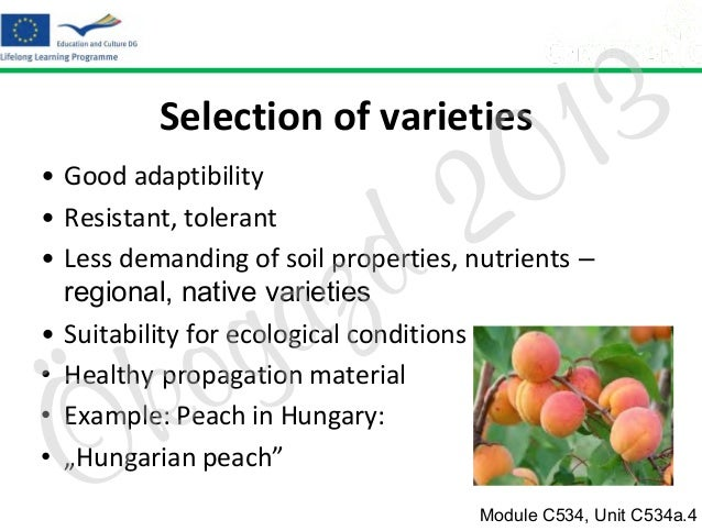 3 1 0  Selection of varieties  2 d  • Good adaptibility • Resistant, tolerant • Less demanding of soil properties, nutrien...