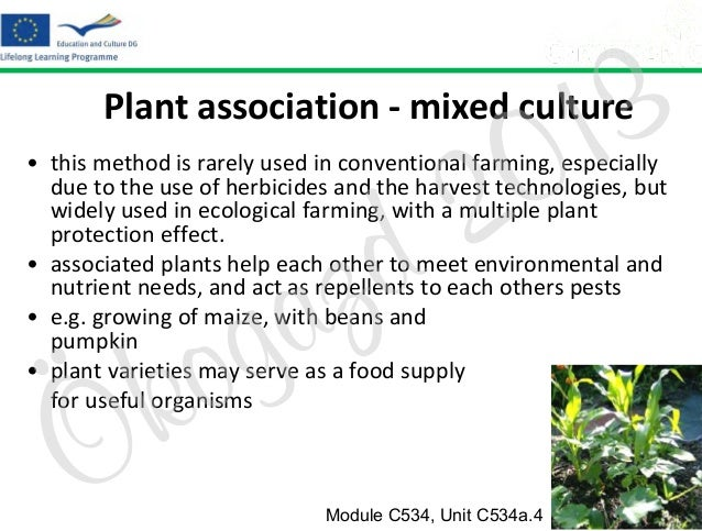 3 1 0  Plant association - mixed culture  2 d  • this method is rarely used in conventional farming, especially due to the...