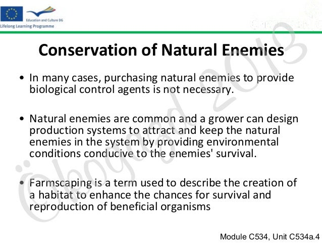 3 1 0  Conservation of Natural Enemies  2 d  • In many cases, purchasing natural enemies to provide biological control age...