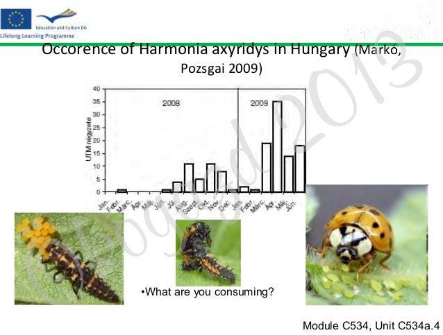 3 1 0  Occorence of Harmonia axyridys in Hungary (Markó, Pozsgai 2009)  z a g  o k  Ö  2 d  •What are you consuming? Modul...