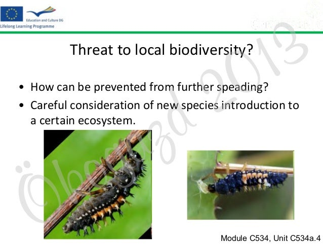 3 1 0  Threat to local biodiversity?  2 d  • How can be prevented from further speading? • Careful consideration of new sp...