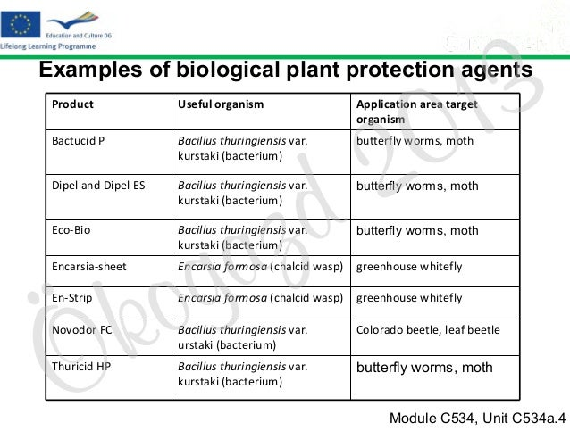 3 1 0  Examples of biological plant protection agents Product Bactucid P  Bacillus thuringiensis var. kurstaki (bacterium)...