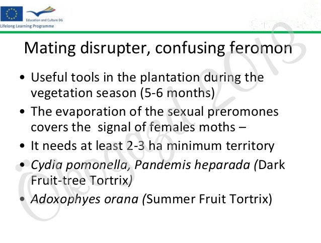 3 1 0  Mating disrupter, confusing feromon  2 d  • Useful tools in the plantation during the vegetation season (5-6 months...