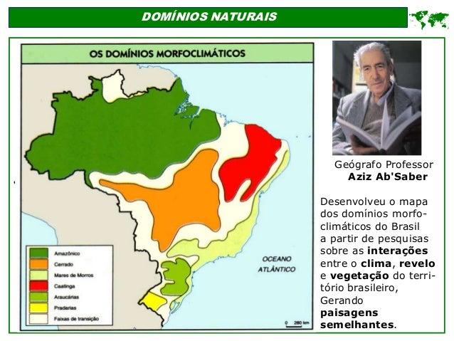' DOMÍNIOS NATURAIS  Geógrafo Professor Aziz Ab'Saber Desenvolveu o mapa dos domínios morfo- climáticos do Brasil a parti...